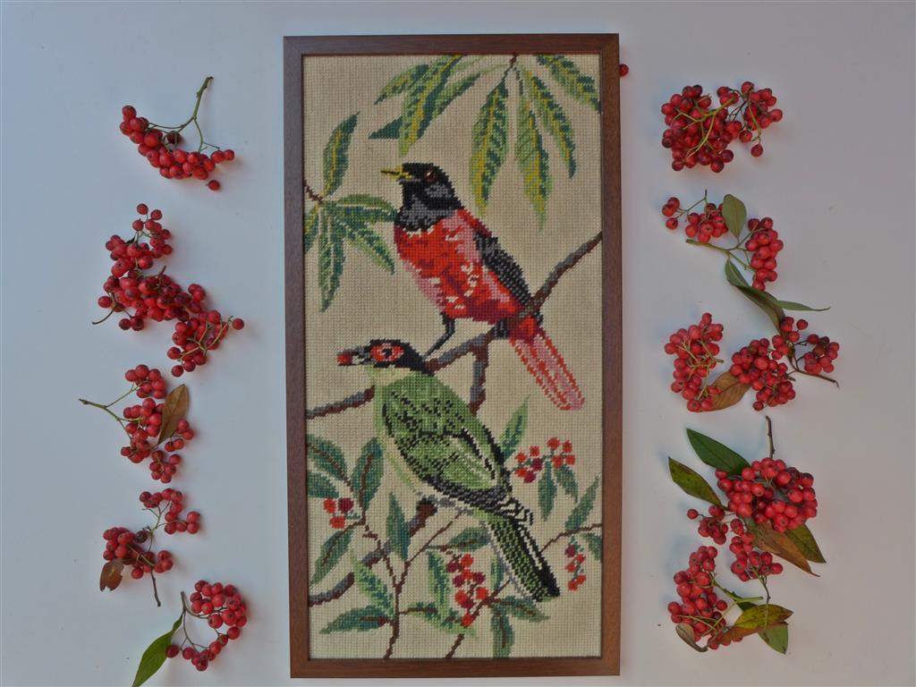 Vogels met besjes
