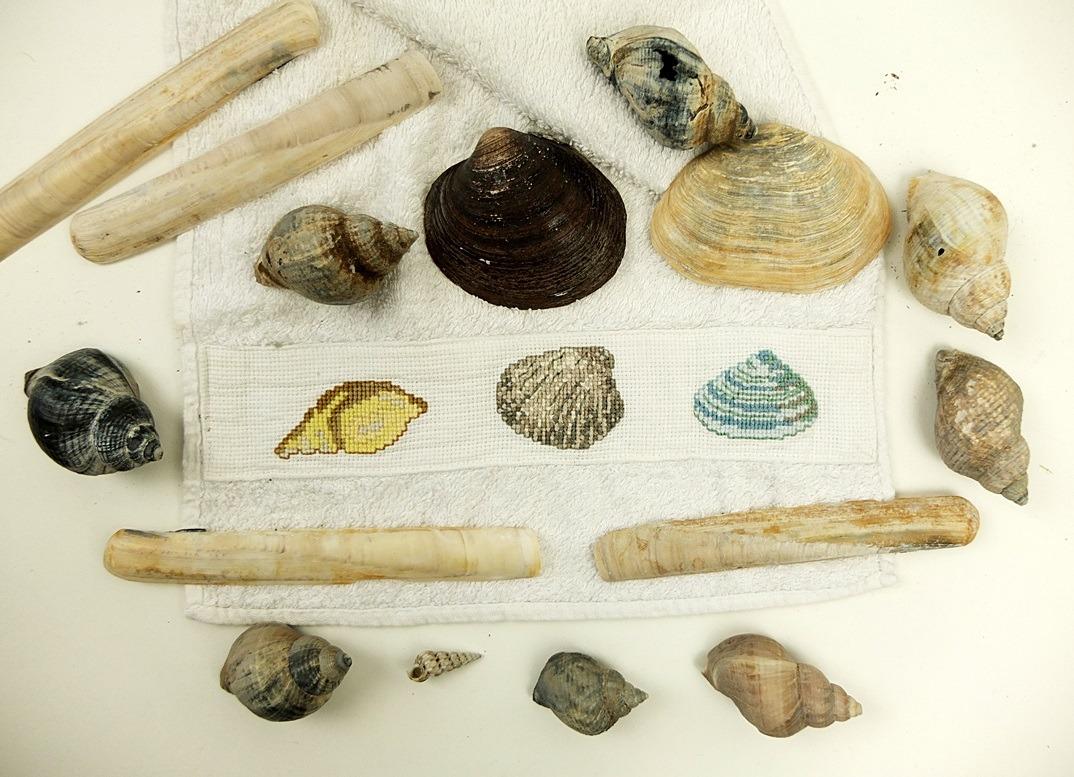 schelpen geborduurd en echt