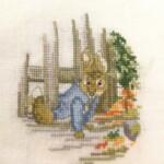 Peter Rabbit geborduurd