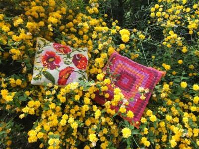 Twee oranje kussens in bloeiende Kerrie