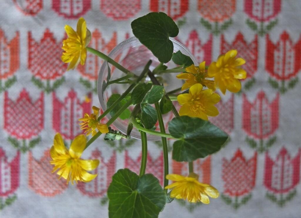 Speenkruid met geborduurde tulpen op achtergrond