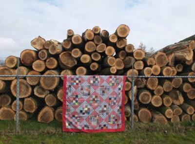 Ruitenquilt opgehangen voor boomstammen