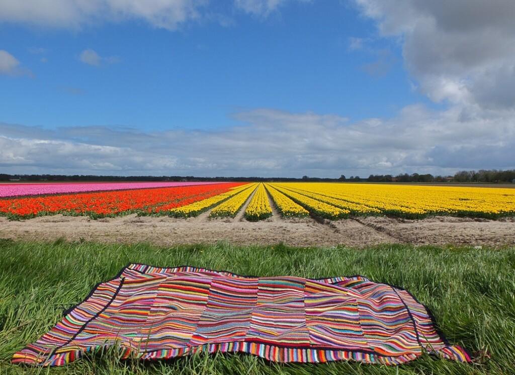 Veelkleurige gehaakte deken voor rood en geel bollenveld