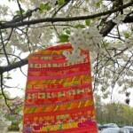 Oranje patchwork kleedje aan tak met bloesem
