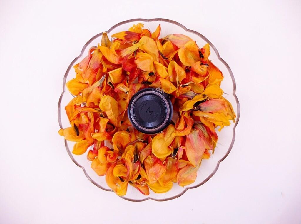 Gele tulpenbladeren op kristallen schaal