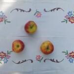 Geborduurd kleedje met drie appels