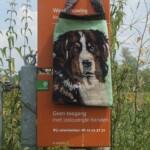 Tapisserietas hond