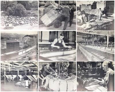 Collage foto's uit boekje the story of wool