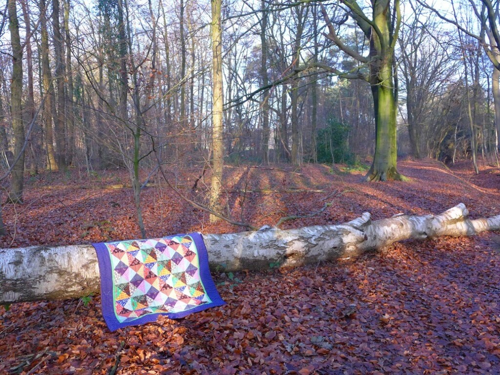 Zandloperquilt over berkenstam