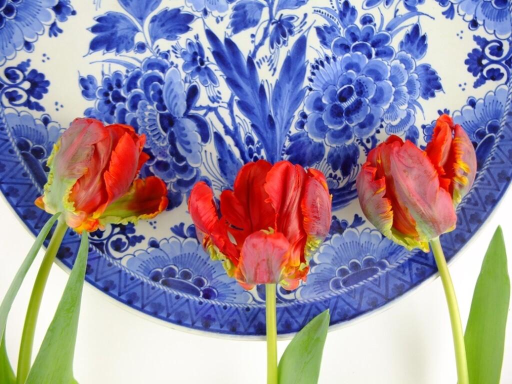 Delfts blauw bord met rode tulpen