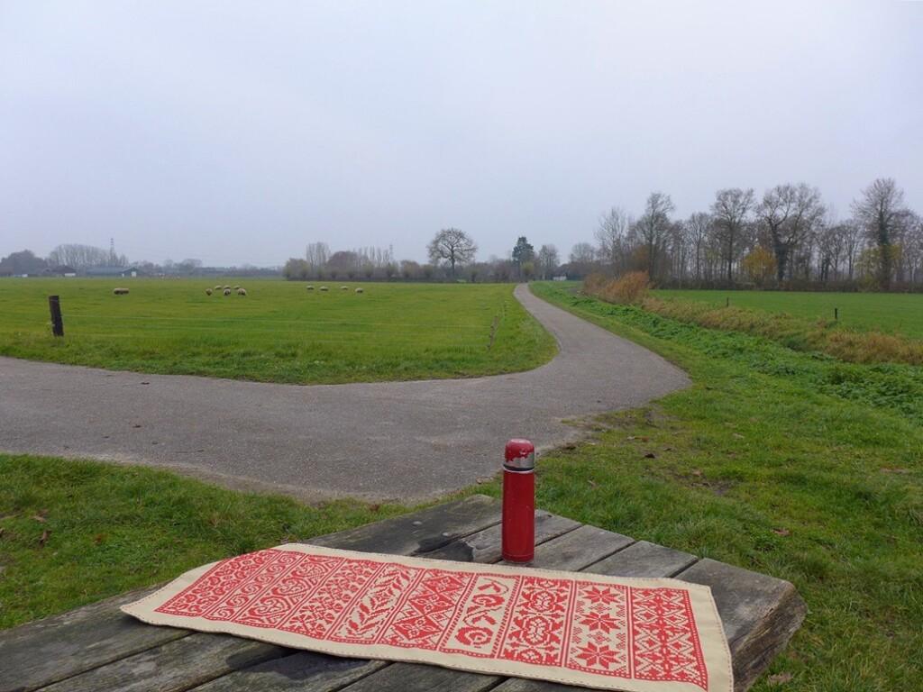 Rode randenlap op picknicktafel