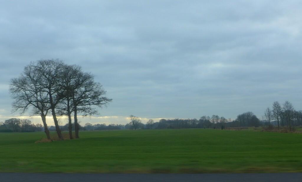 Uitzicht vanaf snelweg eind december