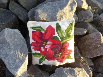Kussen kerstroos op rotsblokken