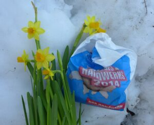 Narcissen en zakje oliebollen in sneeuw