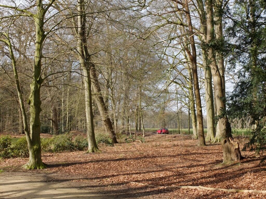 Rode auto op Utrechtse heuvelrug