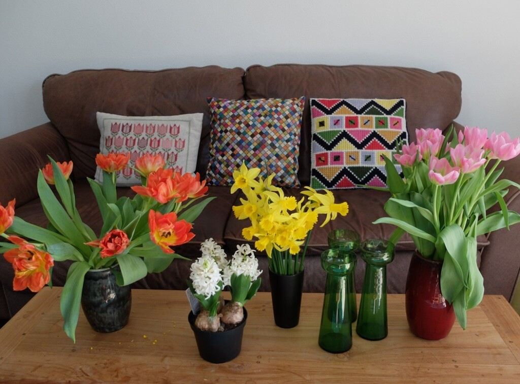 Voorjaarsbloemen en lentekussens