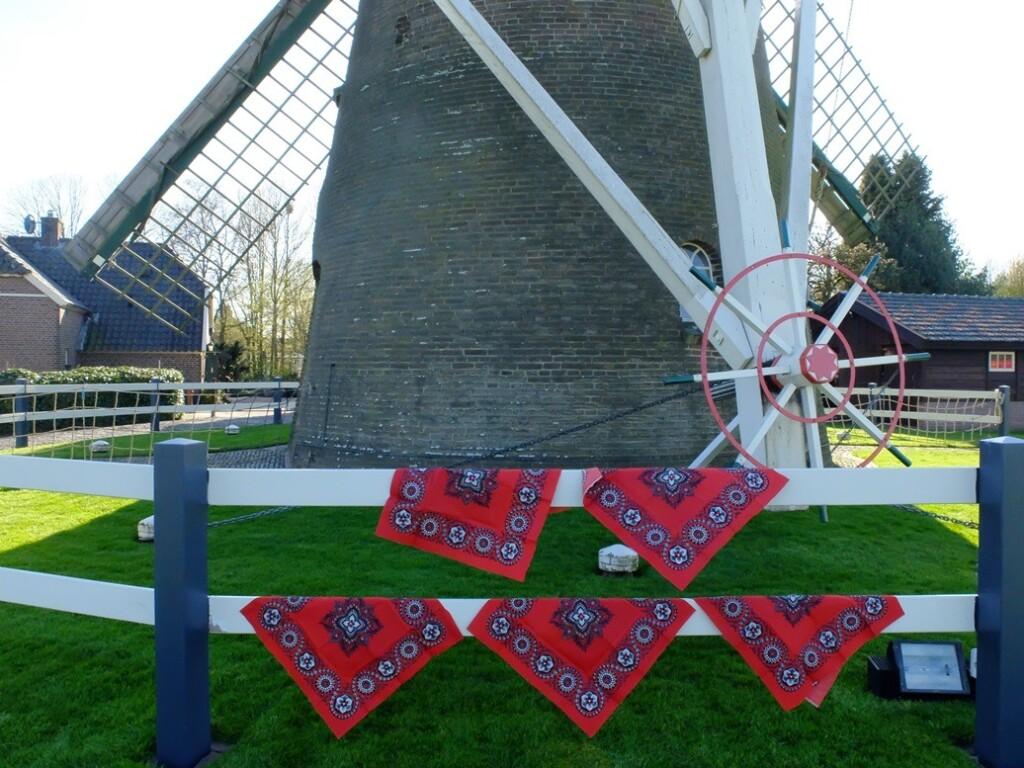Boerenzakdoeken-aan-hek-van-molen