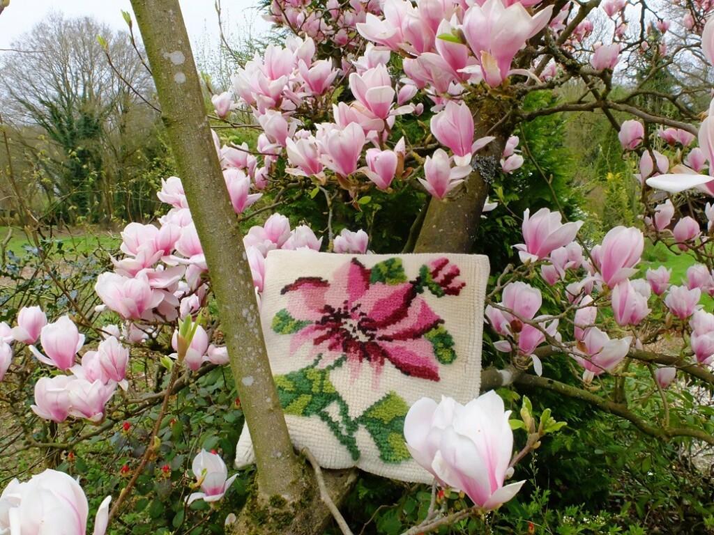 Geknoopt kussen in Magnolia boom