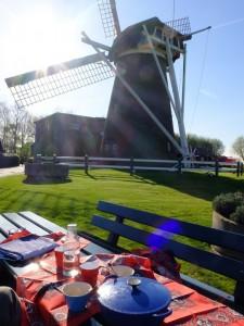 Picknick bij molen