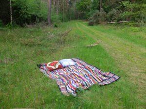Gehaakte deken in bos