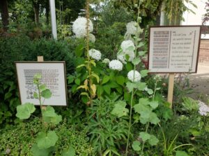 Borduurwerken in tuin BoerenwenteBorduurwerken Boerenwente