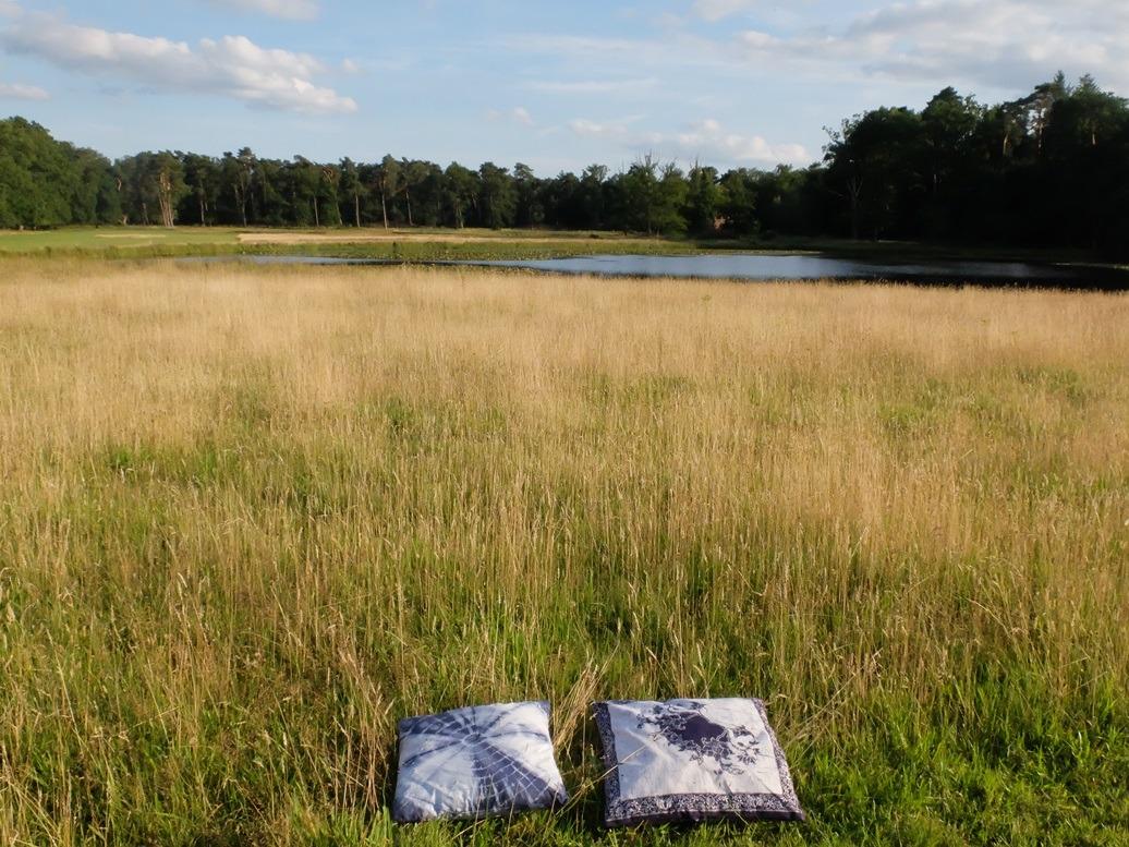 Twee blauwe kussens in hoog gras