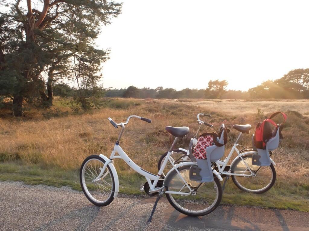 Twee witte fietsen op Hoge Veluwe