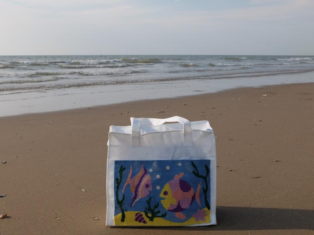 Vissentas op strand