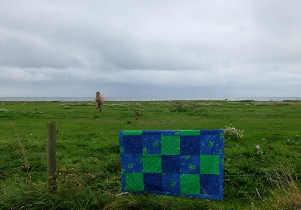Klein quiltje bij weiland aan Waddenzee