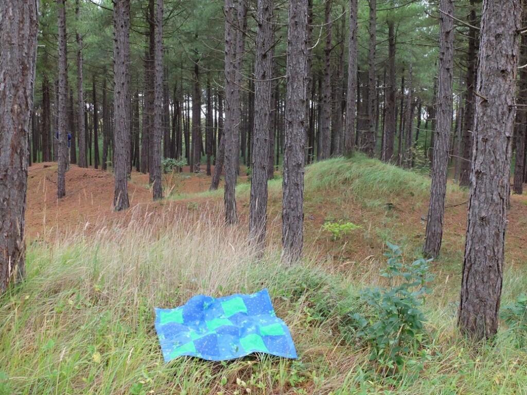 Klein quiltje in bos op eiland
