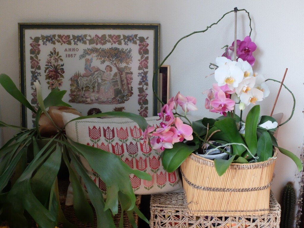 Kussen, schilderij en orchideeën