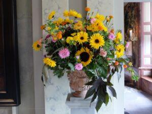 Zonnebloemen in paleis het Loo