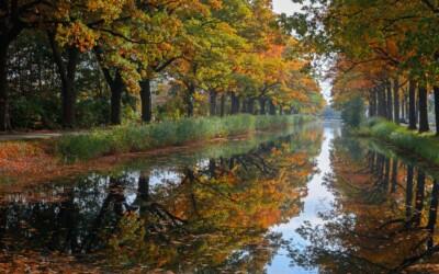Herfst langs kanaal