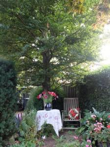 Tuinstoel onder boom