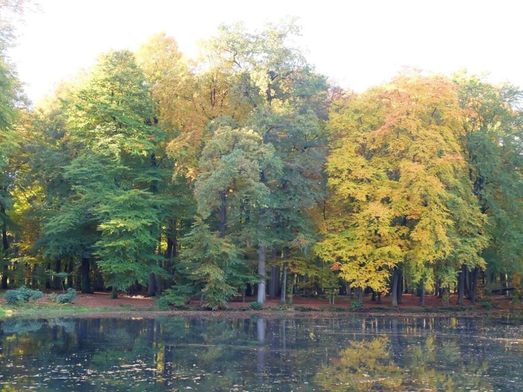 Landgoed Voorstonden in herfst