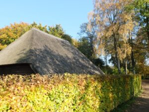 Boerderijtje-rieten-dak