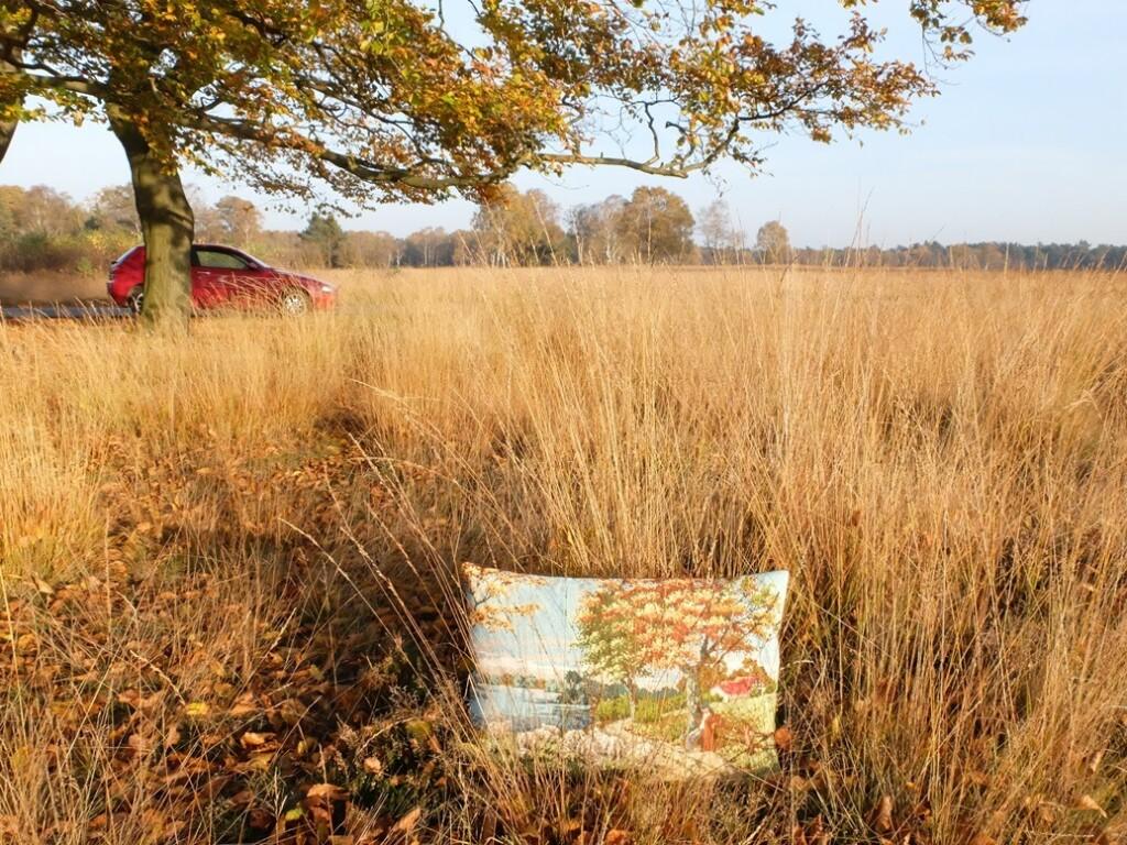 Tapisseriekussen tussen hoge gras