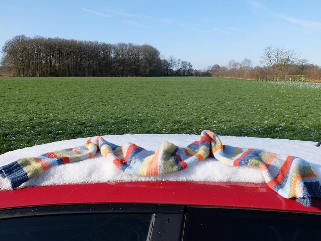 Gebreide-das-op-auto