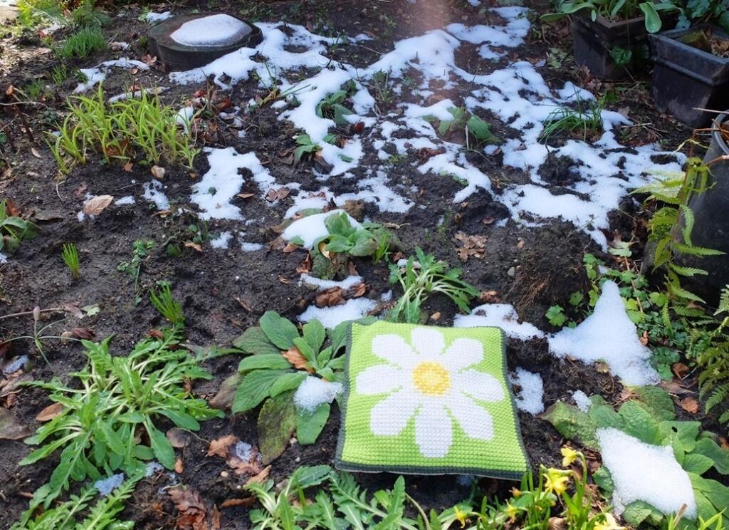 kussentje Margriet op smeltende sneeuw