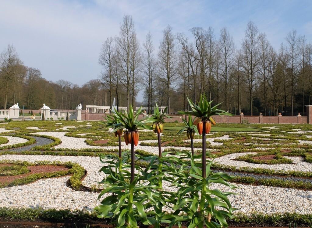 Keizerskroon in tuin Het Loo