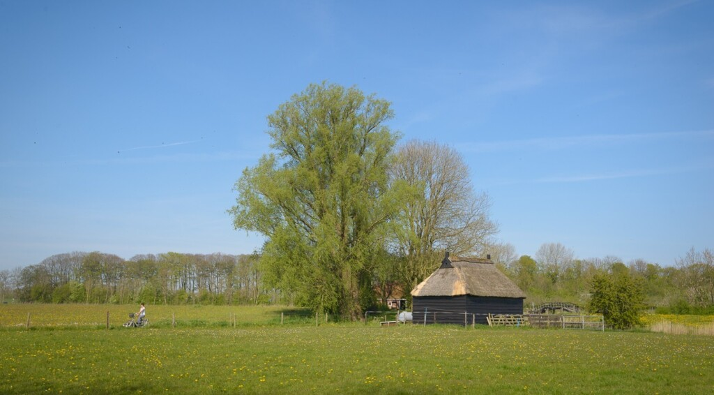 landgoed Verhildersum
