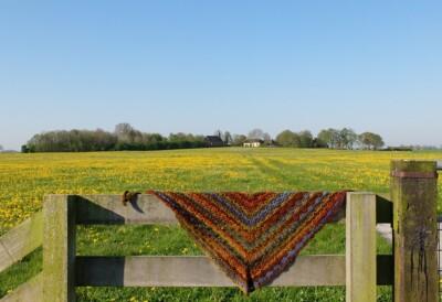 Sjaal van Wibrawol in Groningen