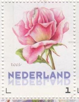 postzegel roos