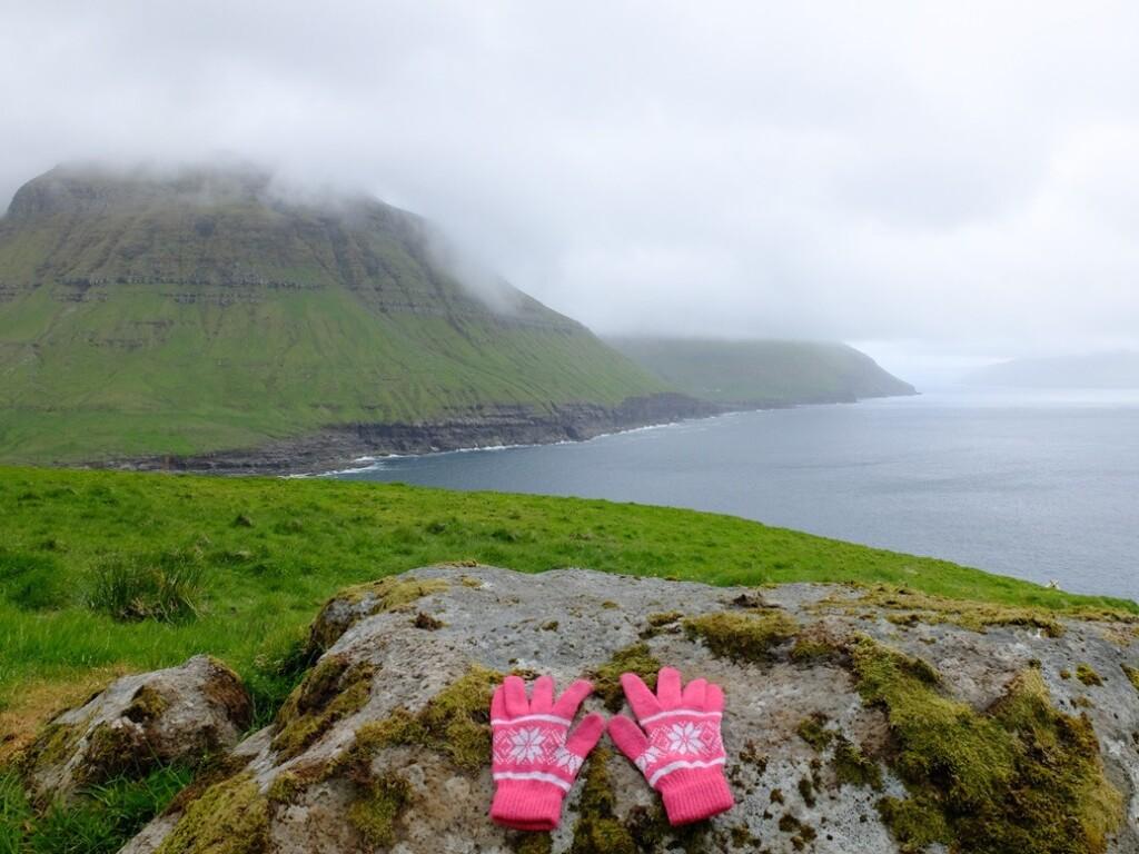 Roze handschoenen op faroër island