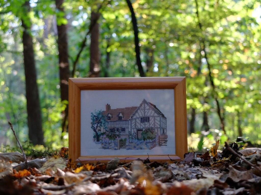 schilderijtje in het bos