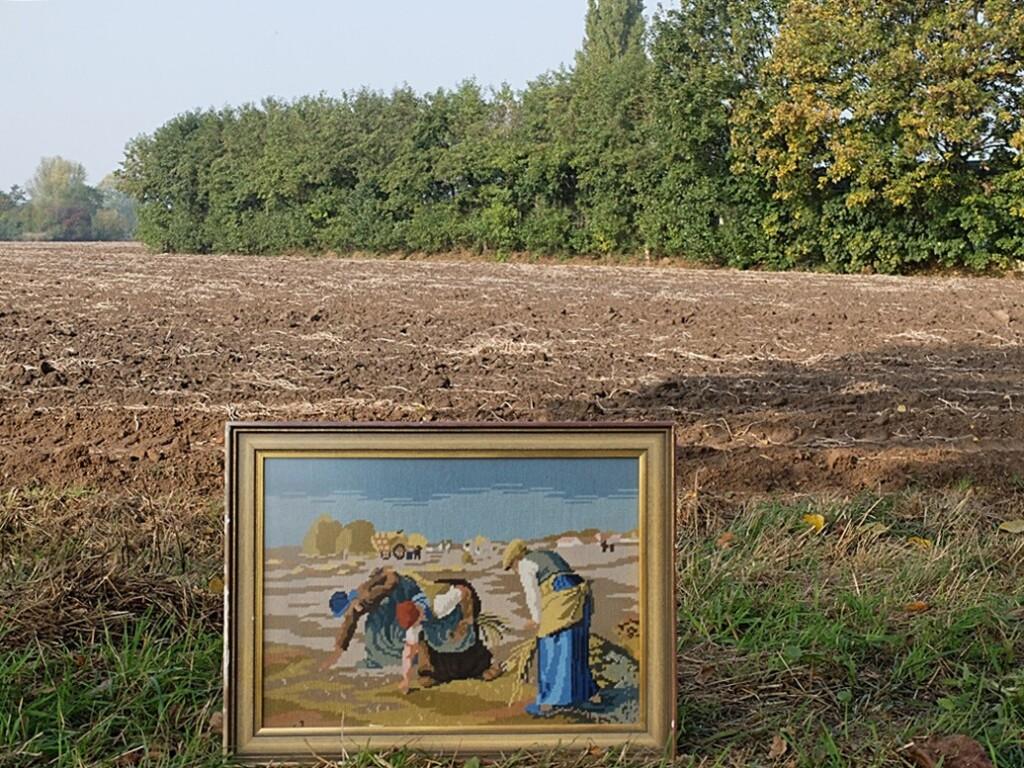 Geborduurd schilderij Arenleesters
