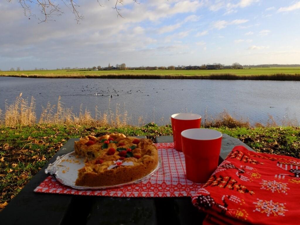 appeltaart op picknicktafel