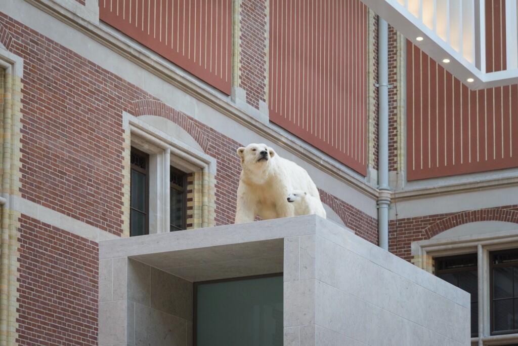 ijsberen in rijksmuseum