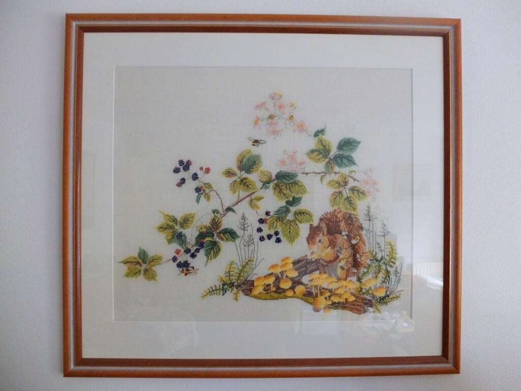 Geborduurd schilderij eekhoorn