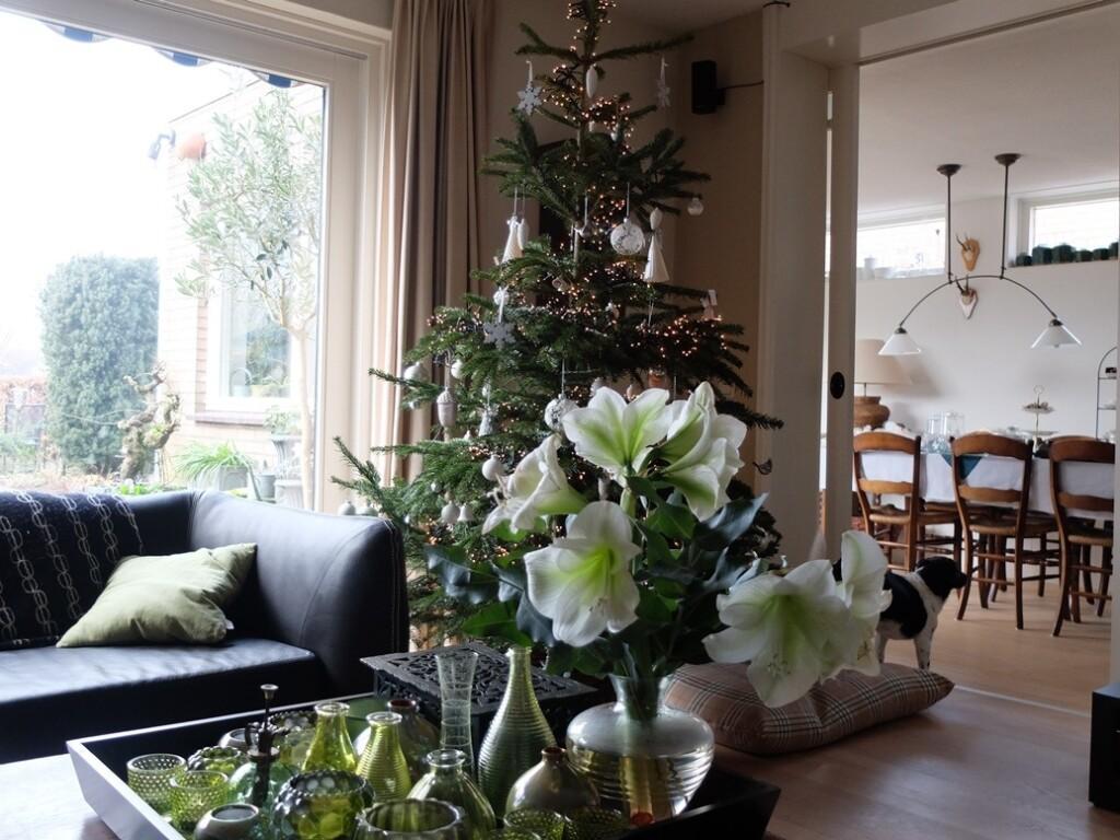 kerstboom in huiskamer